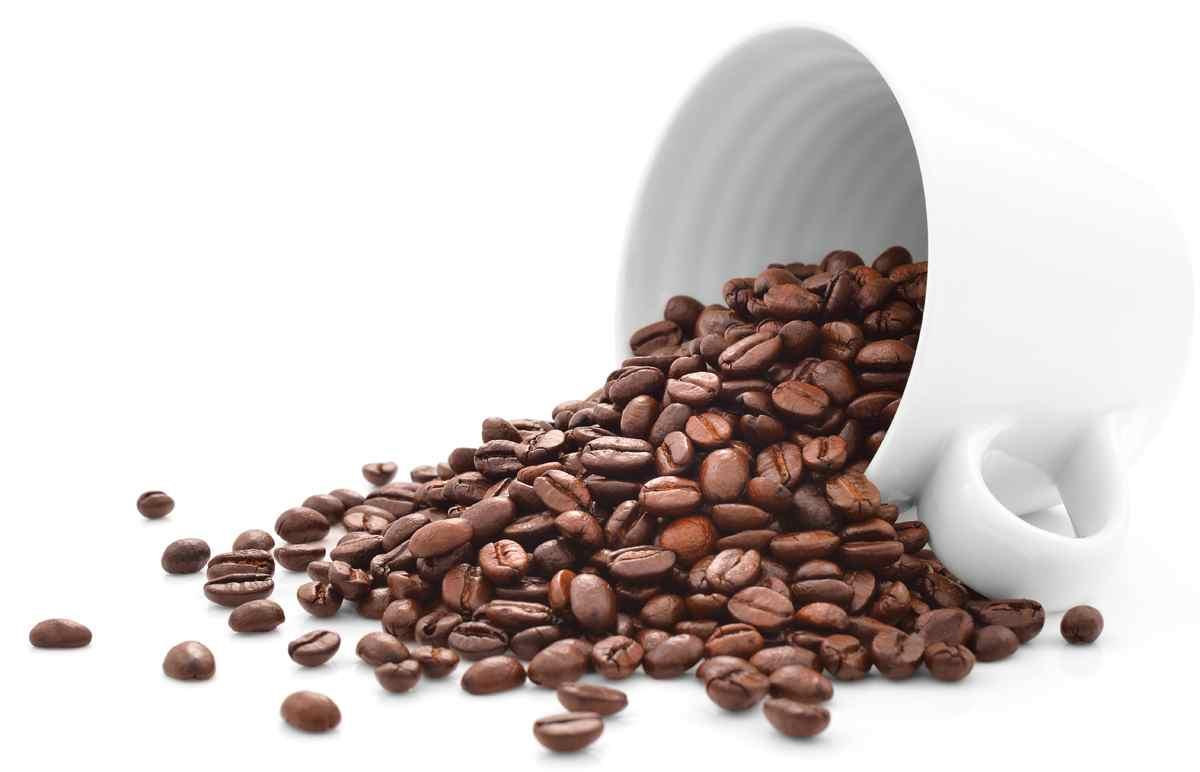 cafe bean